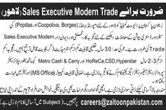 Zaitoon Pakistan Pvt Ltd Jobs